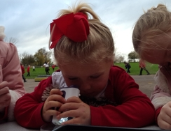 lunchlab Investigating leaves using microscopes on the playground